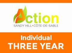 Individual – Three year